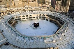 Campaign for Int'l Management of Mecca, Medina Mosques Supported by Muslim Scholars